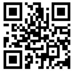 Как отсканировать и расшифровать QR-код через камеру телефона