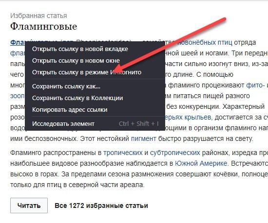 «Инкогнито» в Яндекс.Браузере: как открыть вкладку в приватном режиме?