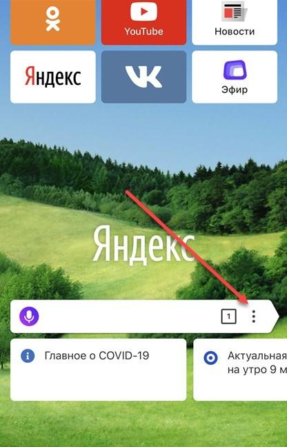 Как почистить историю поиска в Яндексе: быстрые клавиши, через меню и с помощью программ