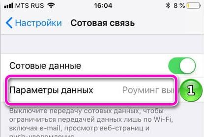 Как на iPhone отключить мобильный интернет: 4 способа